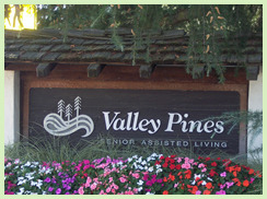 Valley Pines